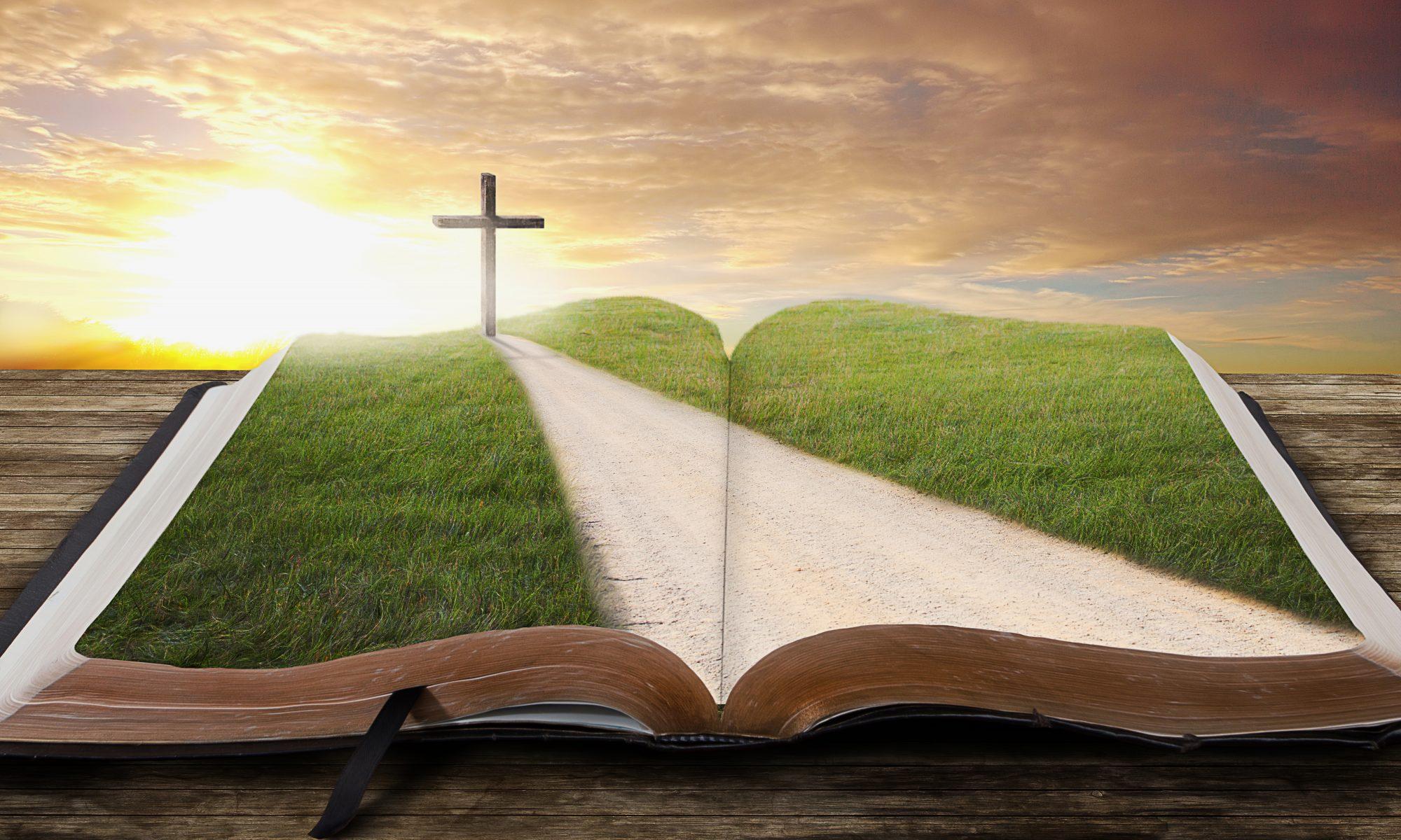 The Biblical Life of Jesus